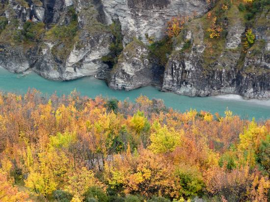 Unforgettable Skippers Canyon Tour : Fall Colors
