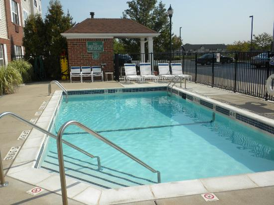 TownePlace Suites Detroit Sterling Heights : Pool