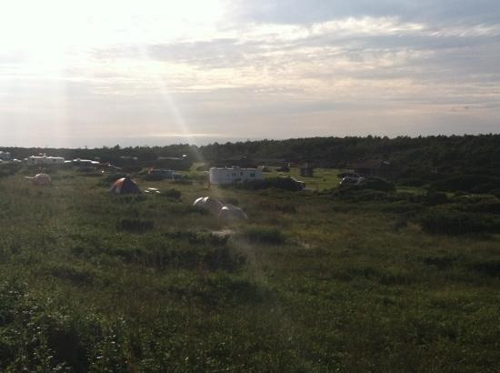 Ocracoke Campground: campground from dune