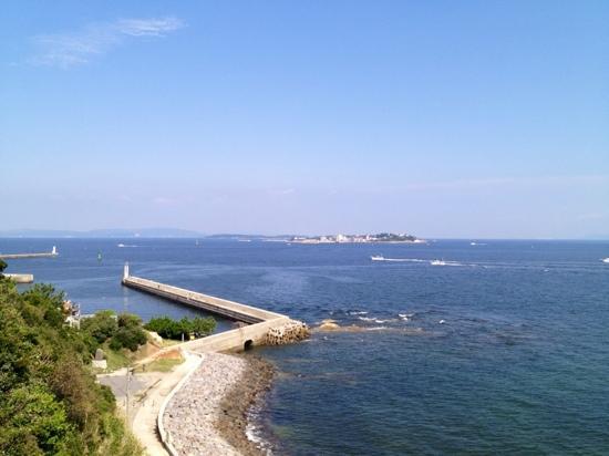 Morozaki Hazu Cape (Hazu Jinja Shrine) : 【羽豆岬展望台】からの180°景色❺