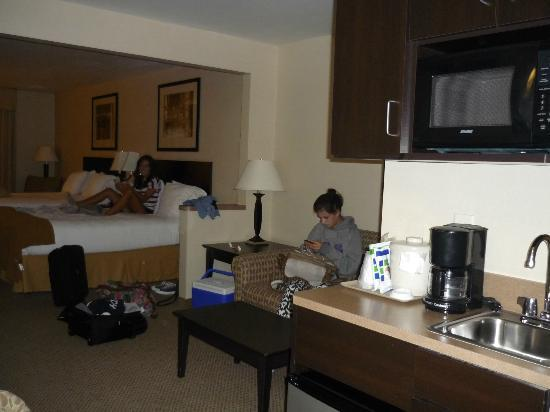 Holiday Inn Express & Suites Sioux Falls - Brandon: Suite