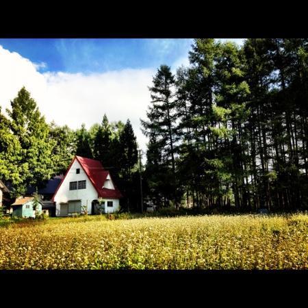 K's House Hakuba Alps: on the way to k's house