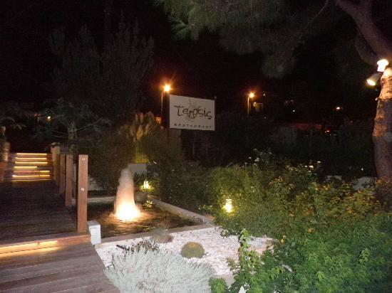 Fountain and gardens at Terpsis