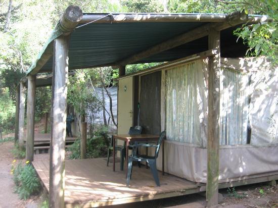 Binna Burra Mountain Lodge Tent/cabin & Tent/cabin - Picture of Binna Burra Mountain Lodge Beechmont ...