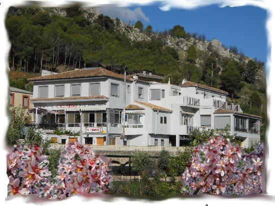 Pension  El Pirineo: HOSTAL