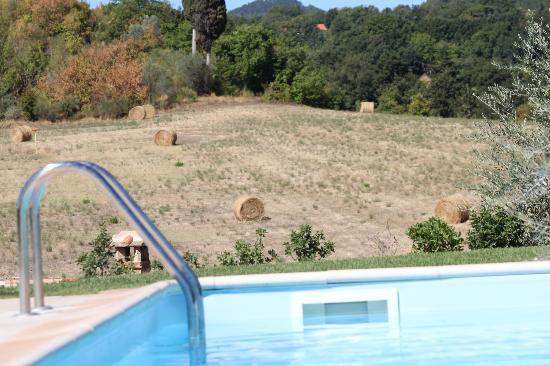 Agriturismo Fonteleccino: Swimming pool with countryside
