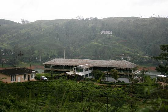 Ceylon Tea Trails: Tea Factory