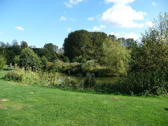 Deer's Glade Caravan & Camping Park: Fishing lake