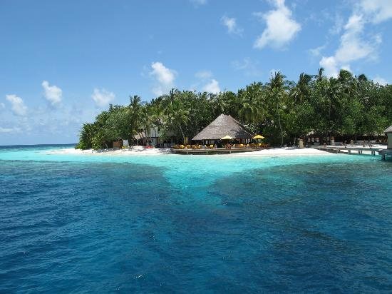 Angsana Ihuru: Excellent house reef