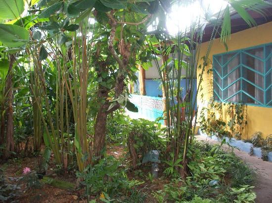 Hotel Guarana: Exteriores