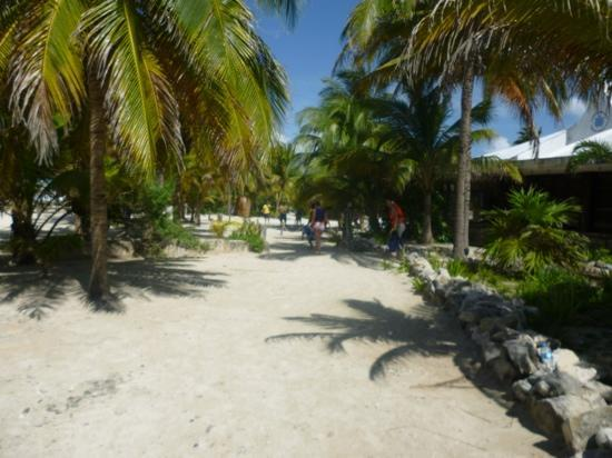 Grand Palladium Colonial Resort & Spa: Akumal