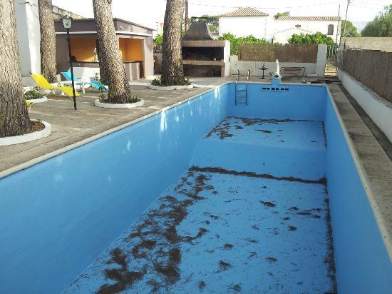 La Palmera : zwembad