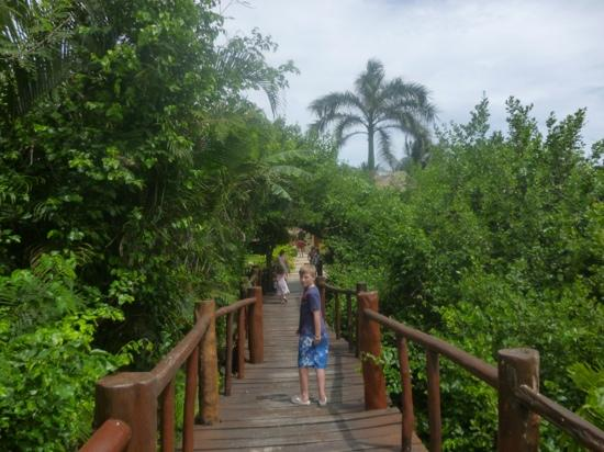 Grand Palladium Colonial Resort & Spa: walkway to pool and beach