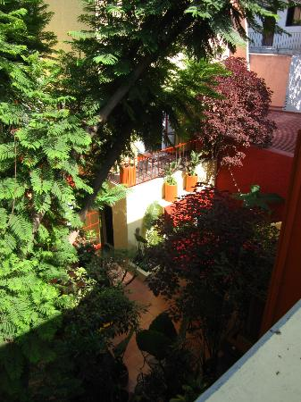 The Red Tree House: View from treehouse room in courtyard