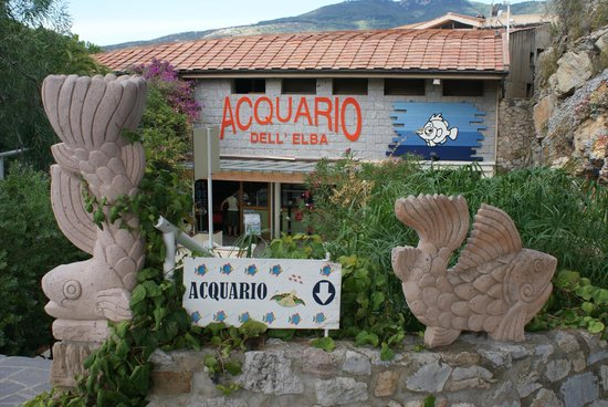 Acquario dell'Elba