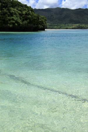 Kabira Bay: 透き通って