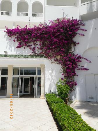 Eden Village Yadis Hammamet: Au sortir de la piscine