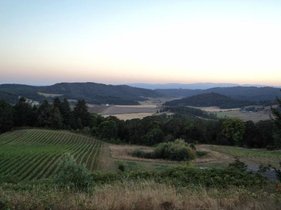 写真Youngberg Hill Vineyards & Inn枚