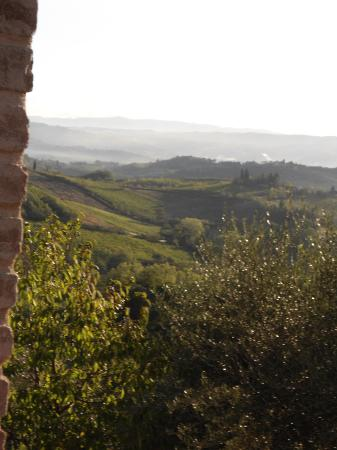 Sulle Orme di Dante Agriturismo: LA VISTA