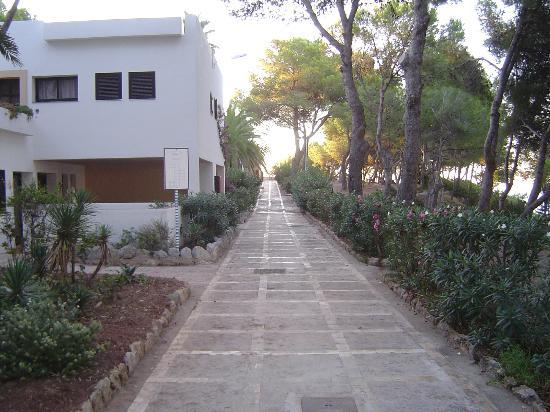 Club Cala Azul: Villaggio