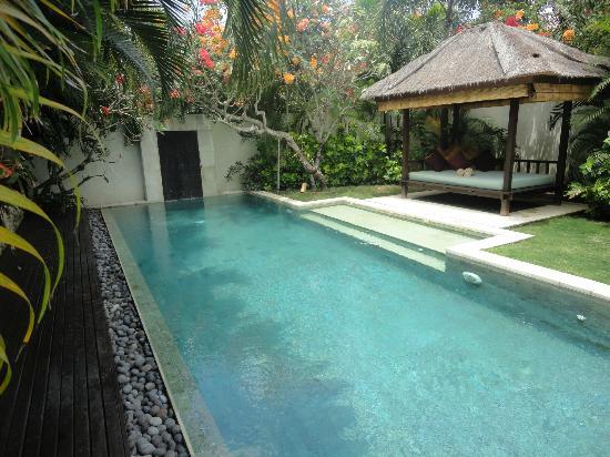 Villa Bali Asri: Villa 6 - The pool 