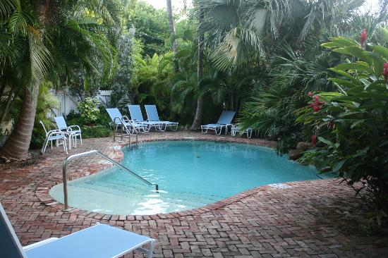 Angelina Guest House: Quaint pool