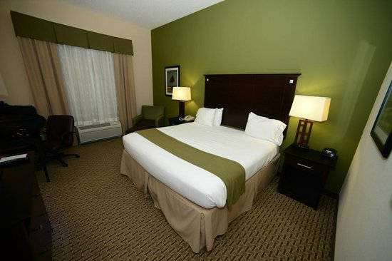Holiday Inn Express Hotel & Suites Opelika Auburn:                   King bedroom