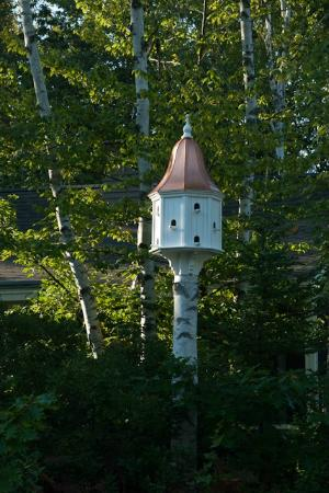 Hidden Pond: Bird house
