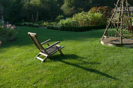 Hidden Pond: Garden chair