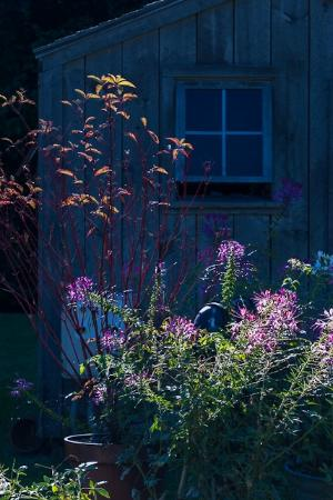 Hidden Pond: Garden house potting shed