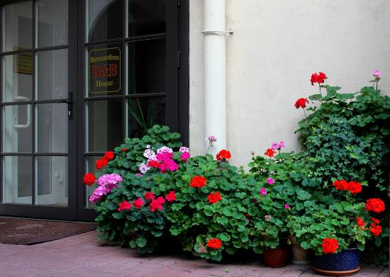 Bernardinu Guest House: B&B office entrance