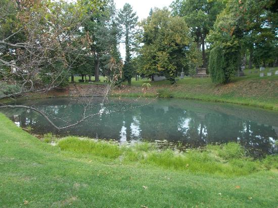 Forest Lawn: Pond near Blue Sky