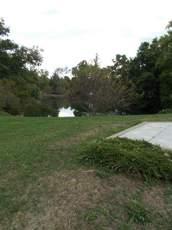 Forest Lawn: Other pond