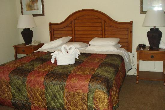 Lake Buena Vista Resort Village & Spa: big bed !