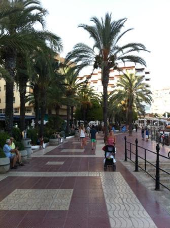 Hostal Mayol: Strandpromenade