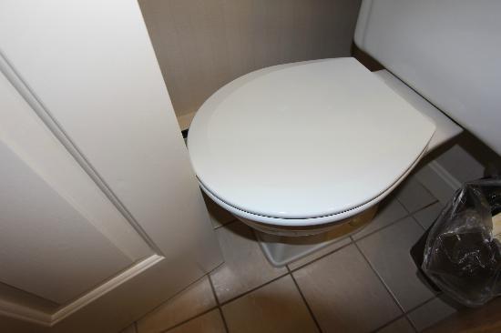 Atlantic Eyrie Lodge: La porte bloquée par les toilettes