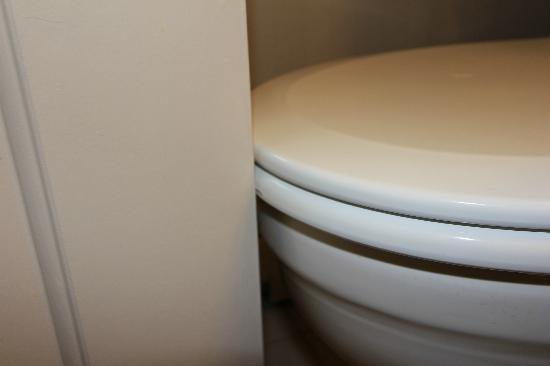 Atlantic Eyrie Lodge: Problème toilettes/porte