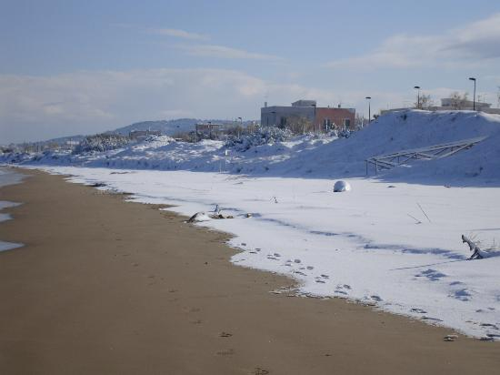 Neve a Foce Varano - Picture of Foce Varano, Province of Foggia ...