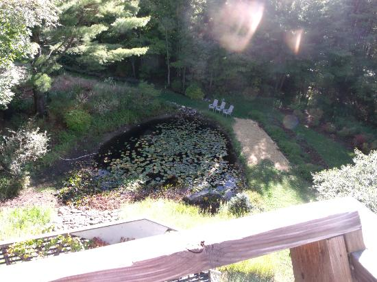 A Stone Wall Inn: View of pond from balcony.