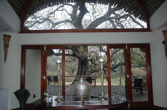Tintswalo Safari Lodge: Entrance to deck