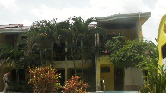 Hotel Giada: piante e verde