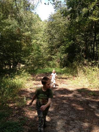 Lake Houston Wilderness Park: room to run