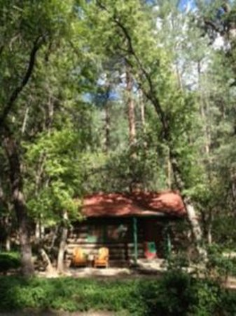 The Butterfly Garden Inn: Our cabins...
