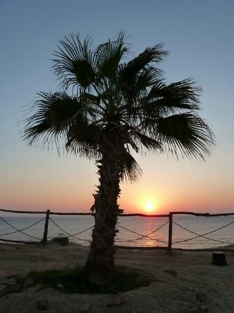 Al Nabila Grand Bay Makadi : Early morning