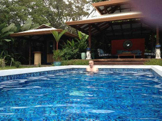 Blue Osa Yoga Retreat and Spa: Lap pool. Nice and warm!