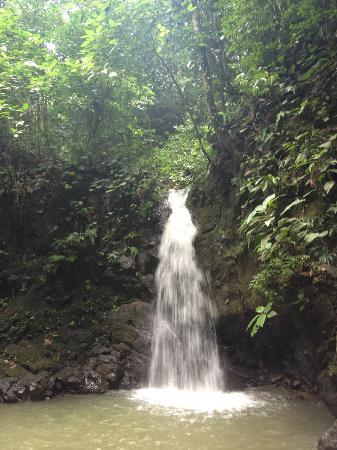 Blue Osa Yoga Retreat and Spa: Waterfall day hike/bike tour