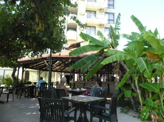 Tayyarbey Hotel: Bar de piscine