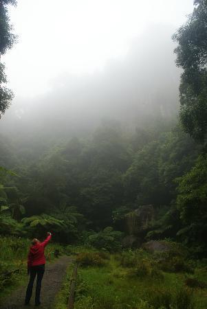 Environmental Interpretation Centre of Caldeira Velha: Caldeira Velha in de mist