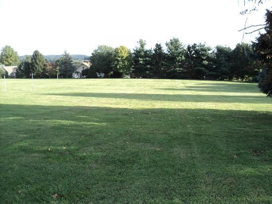 Carriage House Motor Inn: View of grounds out back of office/Pet Friendly!