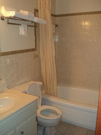 Carriage House Motor Inn: Tidy bathroom